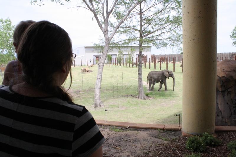 Tirzah Mae and Mama enjoy the elephant