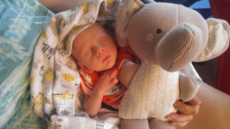 Louis and his elephant