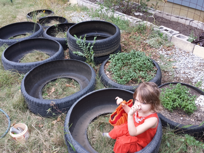 My tire herb garden expansion