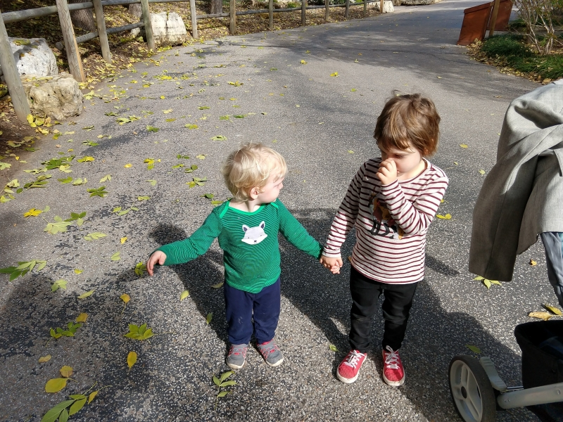 Tirzah Mae and Louis hold hands at the Zoo