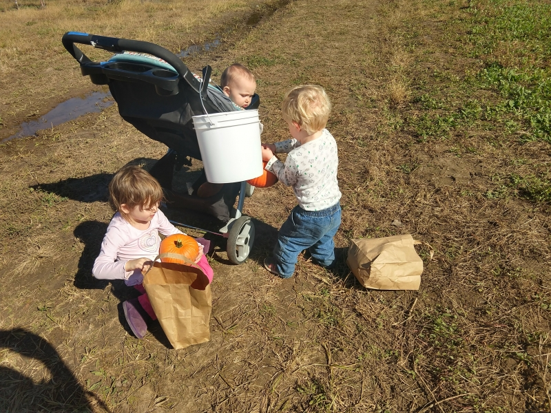 The kids and their pumpkins, sort of