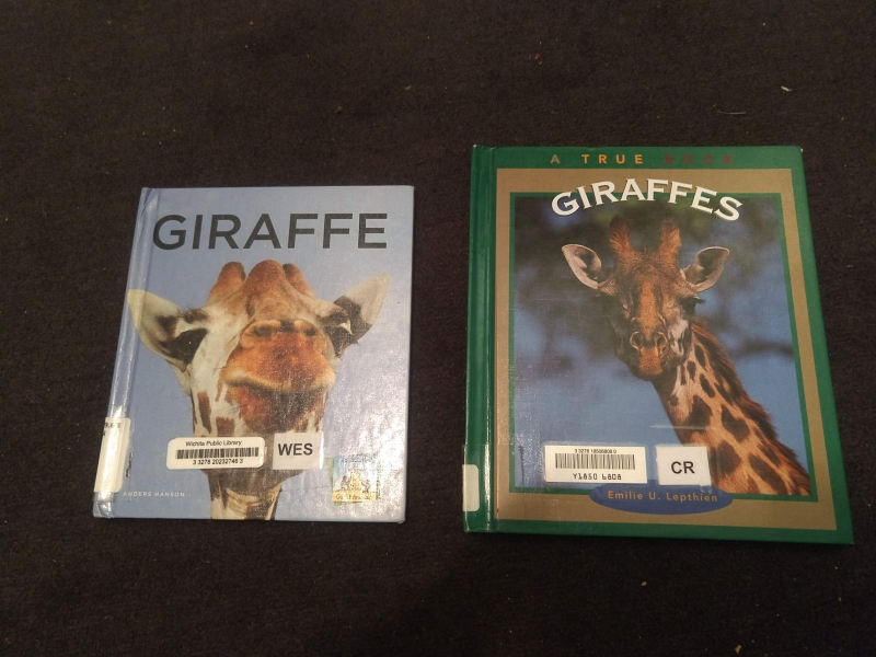Giraffe Books