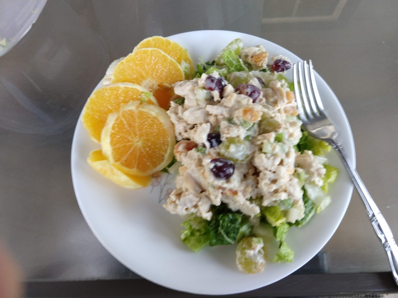 Chicken Salad on lettuce with Orange slices
