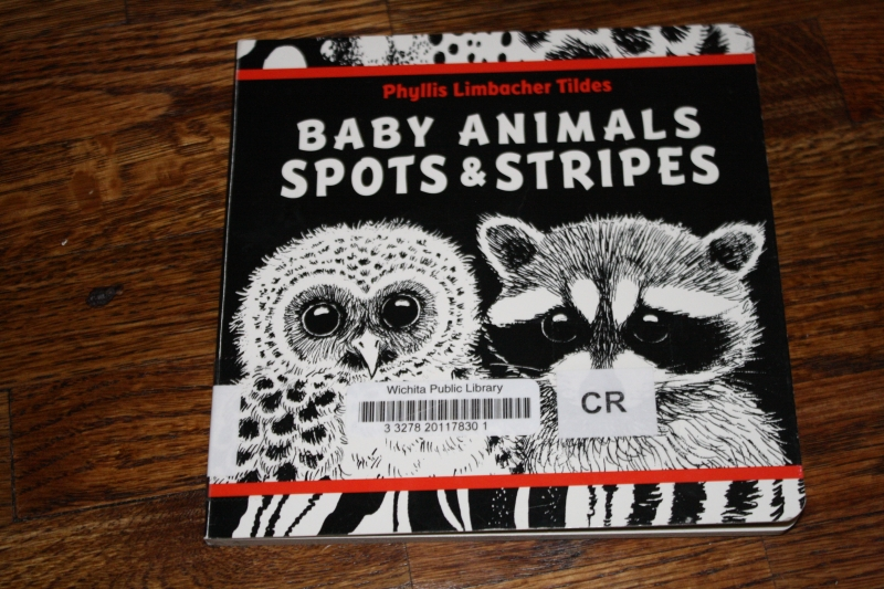 Baby Animal Spots and Stripes