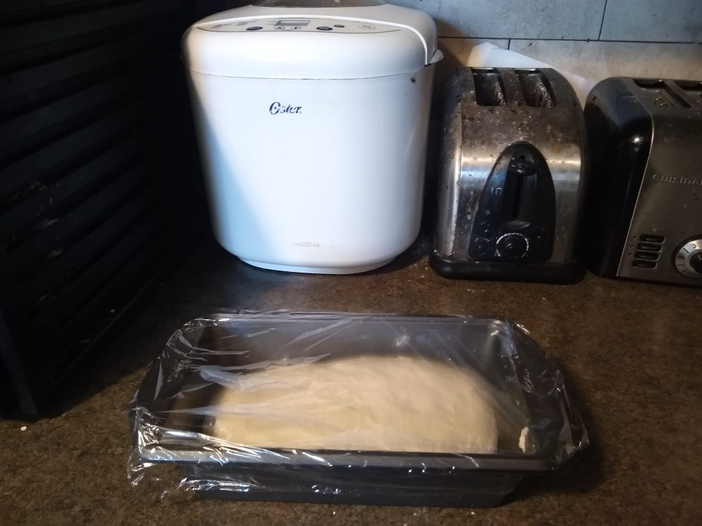 Dough straight out of the breadmaker (pictured in background)