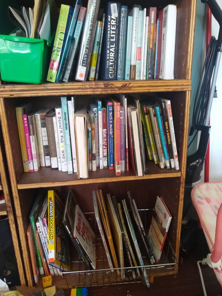 My library shelf (not all books shown - dozens more on my nightstand!)