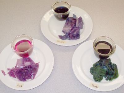 Red Cabbage at different acidity levels